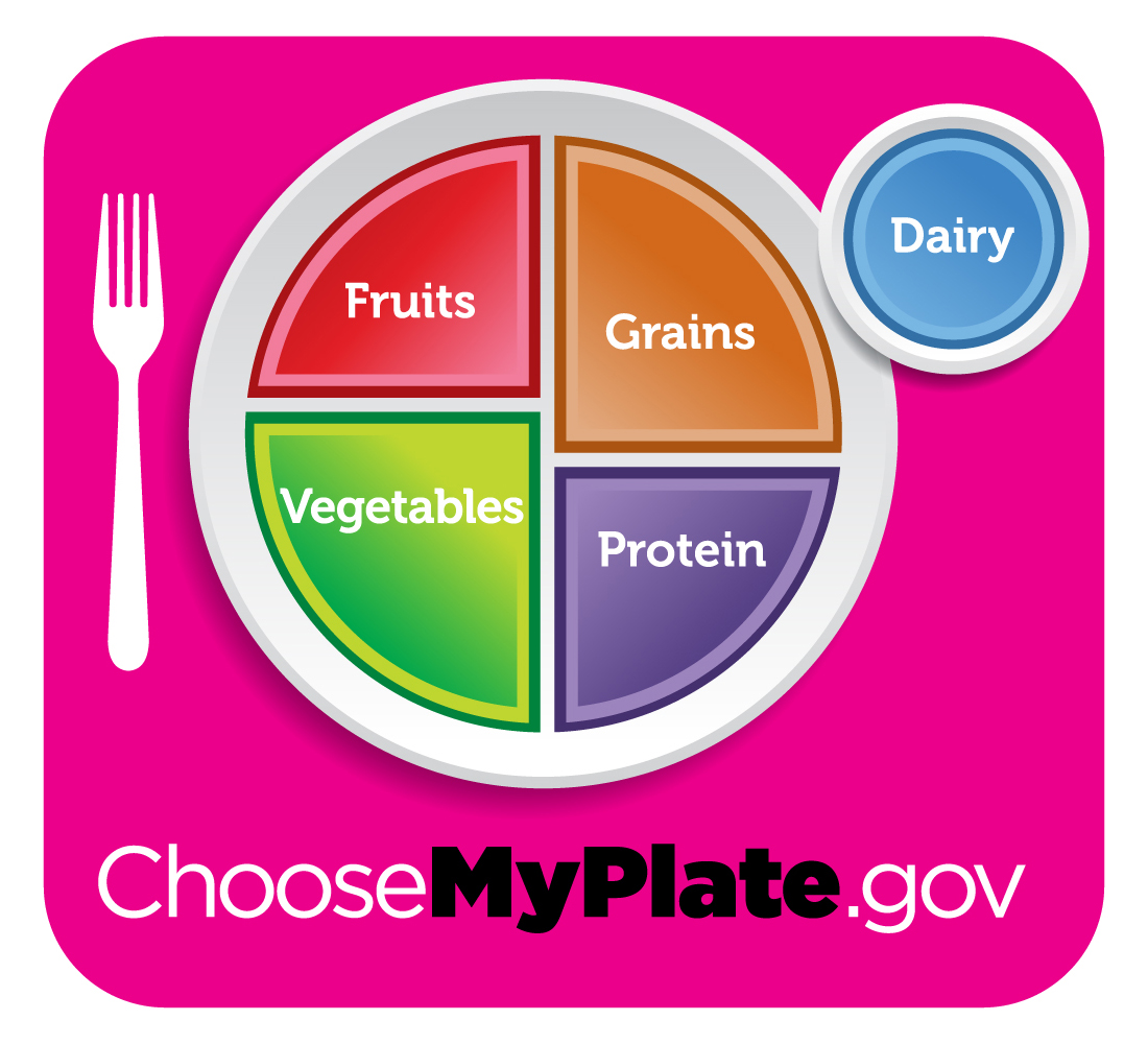 the my plate chart