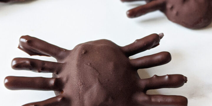 Vegan Chocolate Peanut Butter Spiders