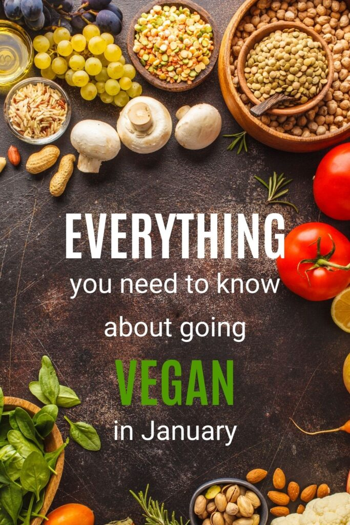Trying to go vegan for the month of January? Veganuary is a popular new years resolution but there are some things to consider to make it practical and sustainable. Here's everything you need to know about going vegan in January. How to go vegan | How to start going vegan | Veganuary tips | Vegan lifestyle | How to start a vegan diet #veganuary