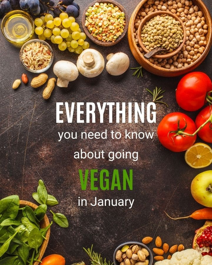 "Table top with a variety of fruits, vegetables, grains, nuts and seeds strewn about with text in the center that says "" everything you need to know about going vegan in january"""