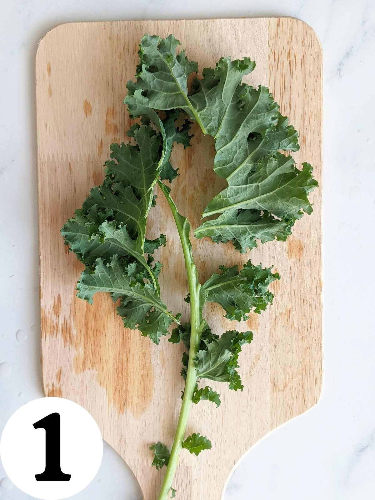 Kale leaf with the stem removed.